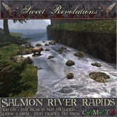 ~*SR*~ Salmon River Rapids - Salmon fishing Bear Add-On Box