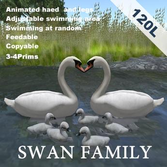 Animated swan family(copyable, feedable)