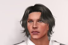 "eDeLsToRe men mesh hair "" Daniel "" all color HUD Promo Hair"