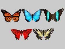 Butterfly Mega Pack - Mesh - Full Perm