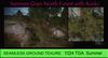 Summer Grass Rock Gound Texture Seamless 1024 TGA