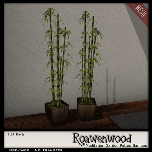 {RW} Potted Bamboo Plant
