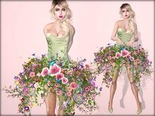 Boudoir-Spring Awakening ⛅