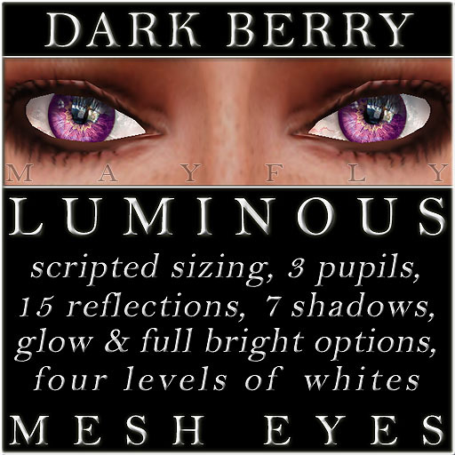 Mayfly - Luminous - Mesh Eyes (Dark Berry)