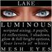Mayfly   luminous   mesh eyes %28lake%29