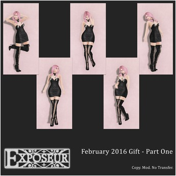 Exposeur - February 2016 Gift - Part One