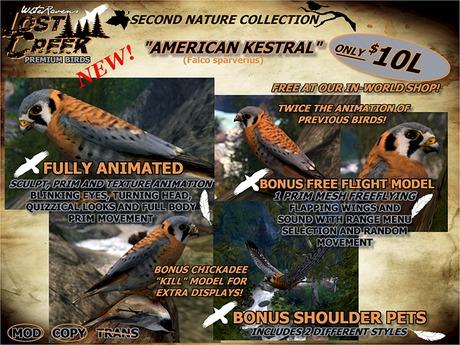 Lost Creek ALMOST *FREE* American Kestrel Bird Set