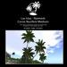 Naima Palm trees Medium