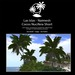 Naima Palm trees Short