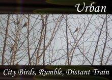 Atmo-Urban - City Birds, Rumble, Distant Train 3:00