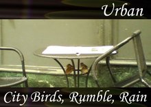 Atmo-Urban - City Birds, Rumble, Rain 2:40