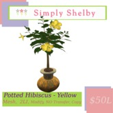 Potted Hibiscus - Yellow