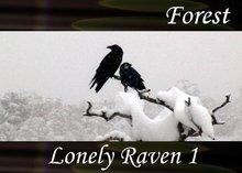Atmo-Forest - Lonely Raven 1 2:20