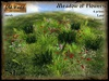 Meadow of flowers (Low prim) v1 - Old World - Garden decorations