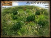 Meadow of flowers (Low prim) v2 - Old World - Green garden