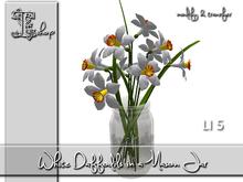 White Daffodils in a Mason Jar MT