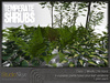 Skye Temperate Shrubs Set 100%Mesh
