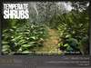 Skye temperate shrubs 6