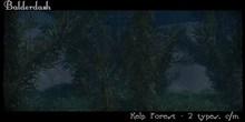 Balderdash -Kelp Forest (wear/add to open)