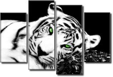 Tiger white - Panel Wall Art - Boxed