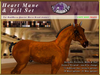 *E* RealHorse Heart Mane & Tail Set [BOXED] RHQH
