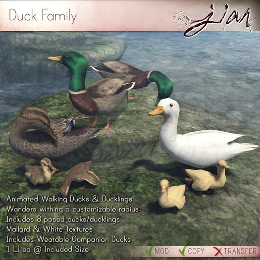 JIAN :: Duck Family