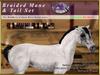 *E* RealHorse Braided Mane & Tail Set [BOXED] RHAB