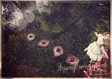 {vespertine} - skipping  wonderland stones