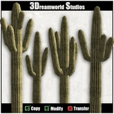 Saguaro cactus pack