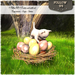 EASTER Special price !! Follow US !! Easter nest with cat COPY