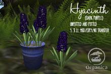 [ Organica ] Hyacinth (Dark Purple)