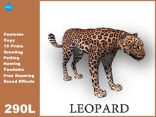 [TomatoPark] Leopard Mesh 3.5 ( roaming + wearable )