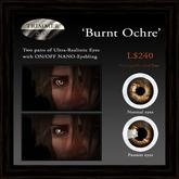 Eyes 'Burnt Ochre' by Trimmer Bay