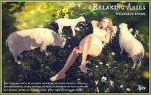 Jinx : Relaxing Aries Wearable