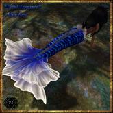 Y.I - Vivid Treasure 'Blue'