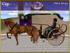 *E* Pony Gig 1-Horse [RH POA Pony] BOXED