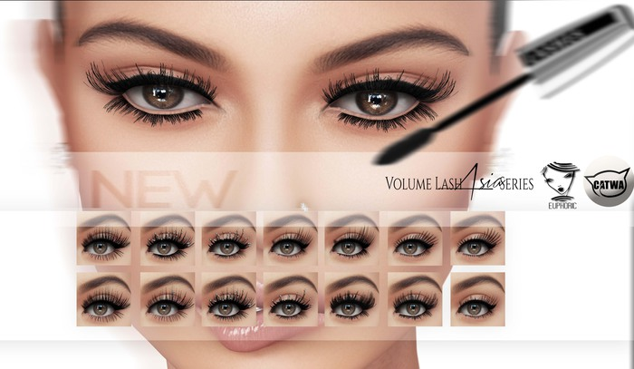 .euphoric ~Volume Lash Asia Series ~[for Catwa Mesh Head]