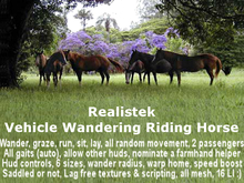 .BlackBeauty - Realistek Vehicle Wandering Riding Horse (boxed)