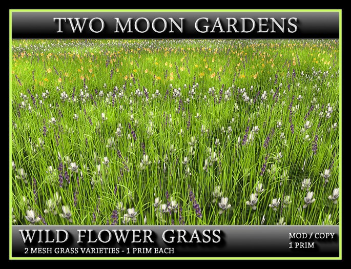 WILD FLOWER GRASS - TWIN PACK* 1 PRIM for Landscaping