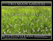 TMG - WILD FLOWER GRASS - TWIN PACK*