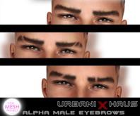 [Urbanix] TMP Alpha Male Eyebrows