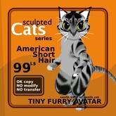 Sculpted Cat ASH AV