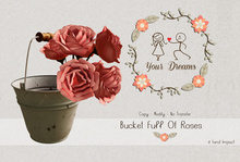 { Your Dreams } Bucket full of Roses.