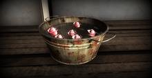 8f8 - New Beginnings - Rose Bucket