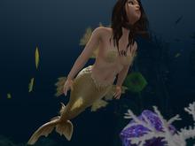 Mermaid / Merman Extra Fins & Shells