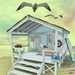Seagull shack 512 x512