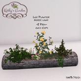 Kathy`s Garden Log Planter roses long