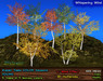 Aspen Trees YOUNG: 5 mesh trees, 5 Color Seasons, Copy+Modify, Wind Effect