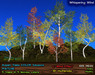 Aspen Trees MATURE: 5 mesh trees, 5 Color Seasons, Copy+Modify, Wind Effect