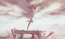 RM ~ Art Of Poses ~ Angels Fly
